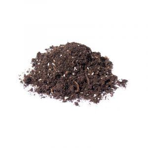 Welke kweekgrond gebruiken?